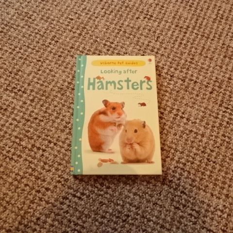 Children hamster book