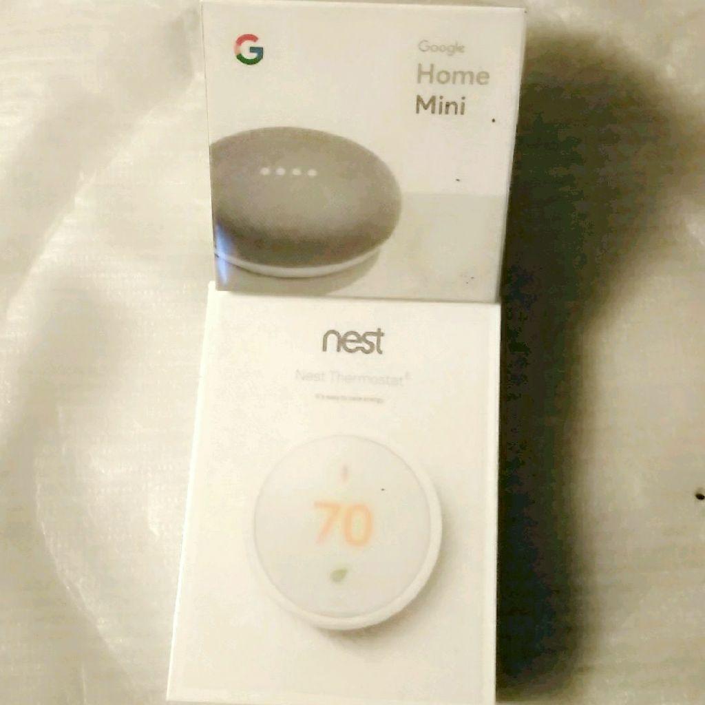 Google Home Mini & Nest Thermostat