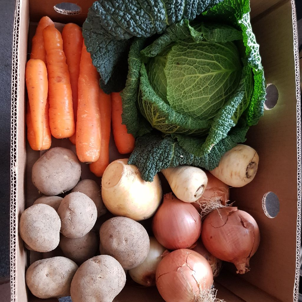 Fresh veg boxes large free delivery