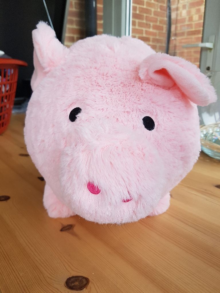 Cuddly Pink Pig Money Box