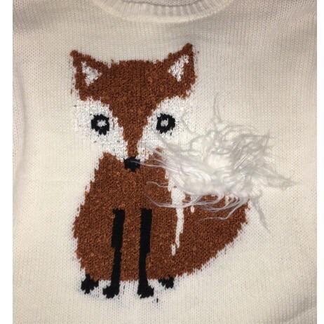 Fox jumper H&M
