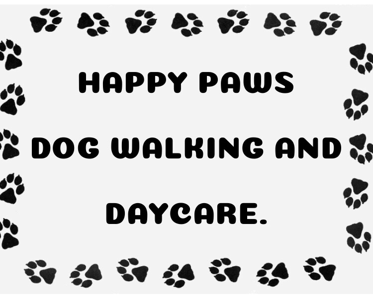 Experienced and reliable dog walking and daycare.