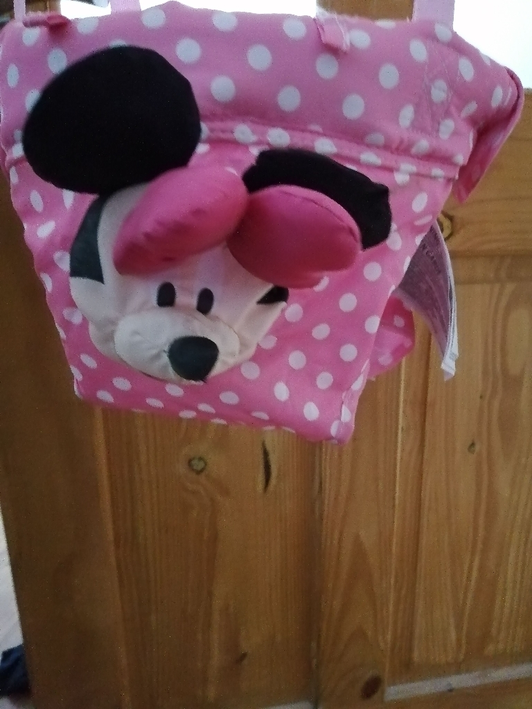 Minnie mouse baby broucher