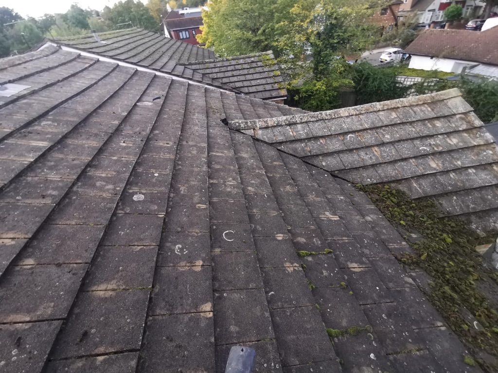 Roof and gutter cleaning and sealing