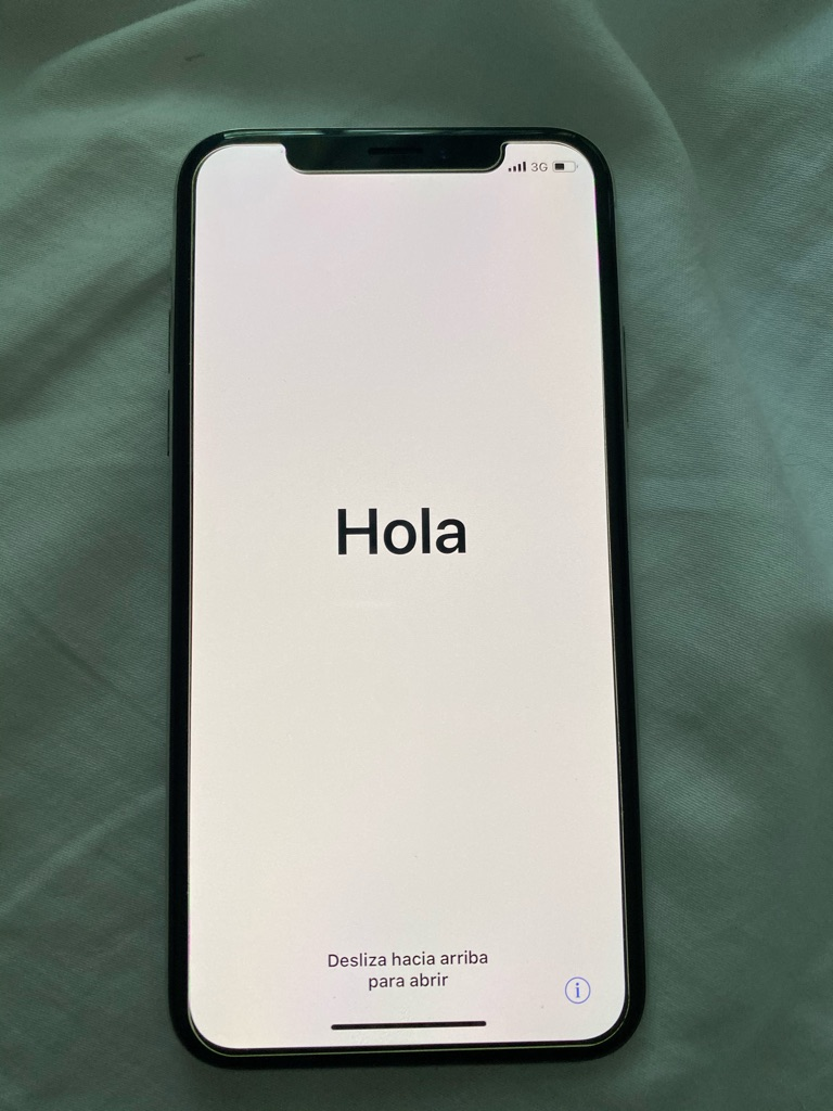 iPhone X 256GB with earbuds