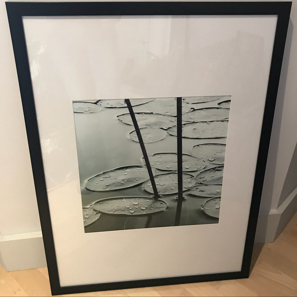 Contemporary Forest Print with wooden frame