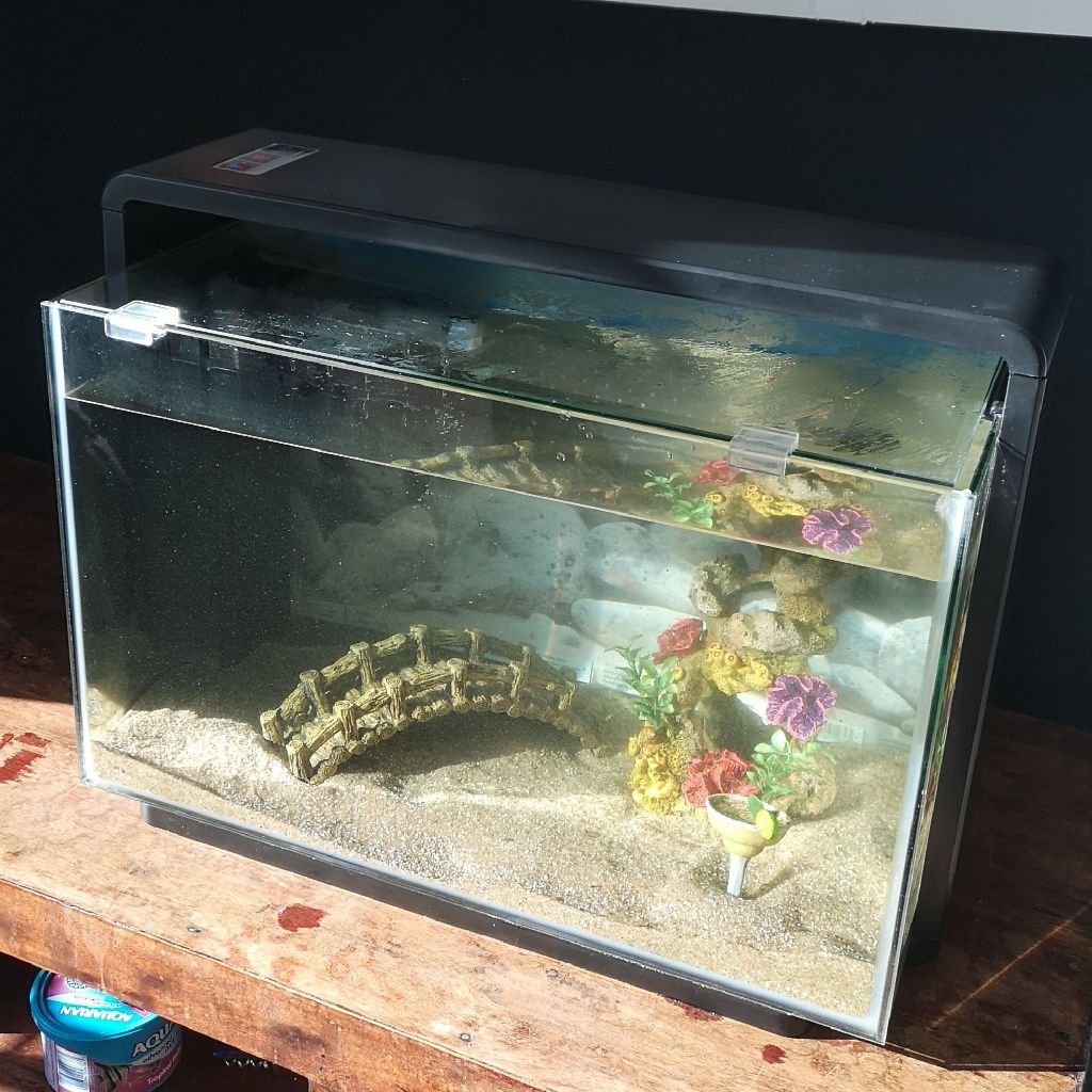 Fish tank + Equipment