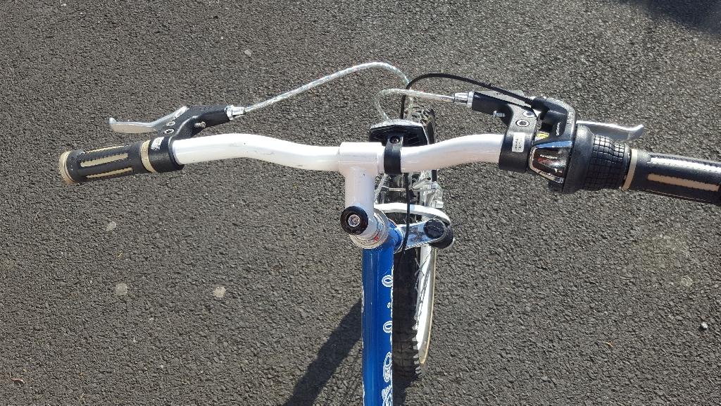 Girls Raleigh bike.