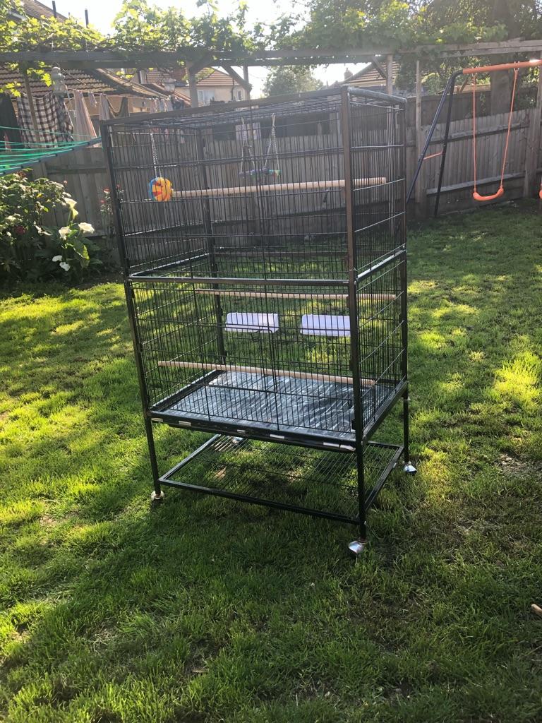 large parrot/birdcage