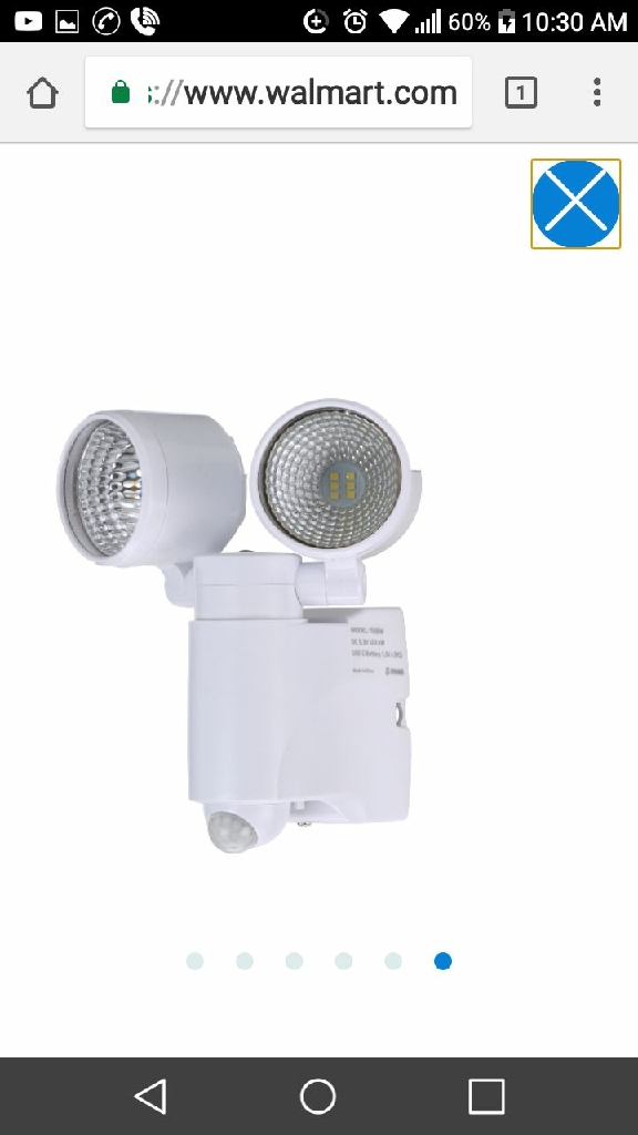 Brinks Security motion sensor light