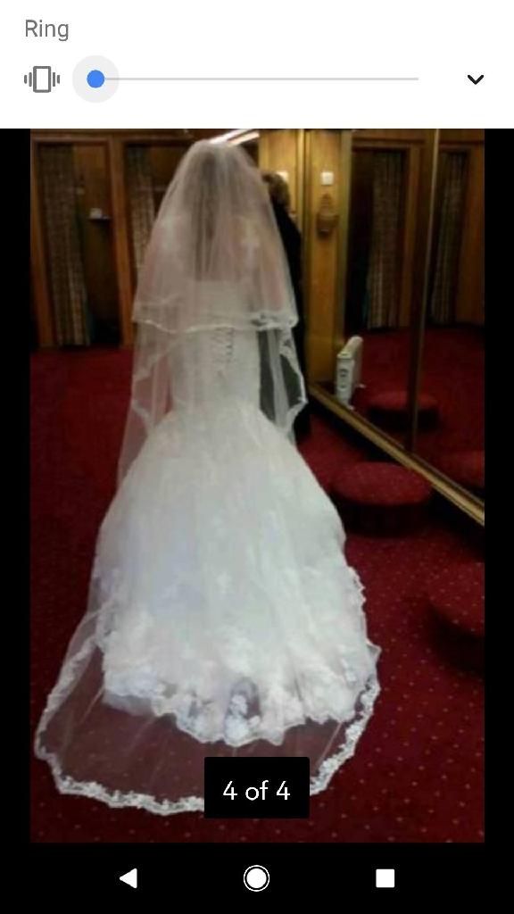 Wedding Dress and Vale
