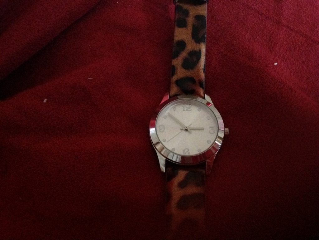 Woman's cheetah watch