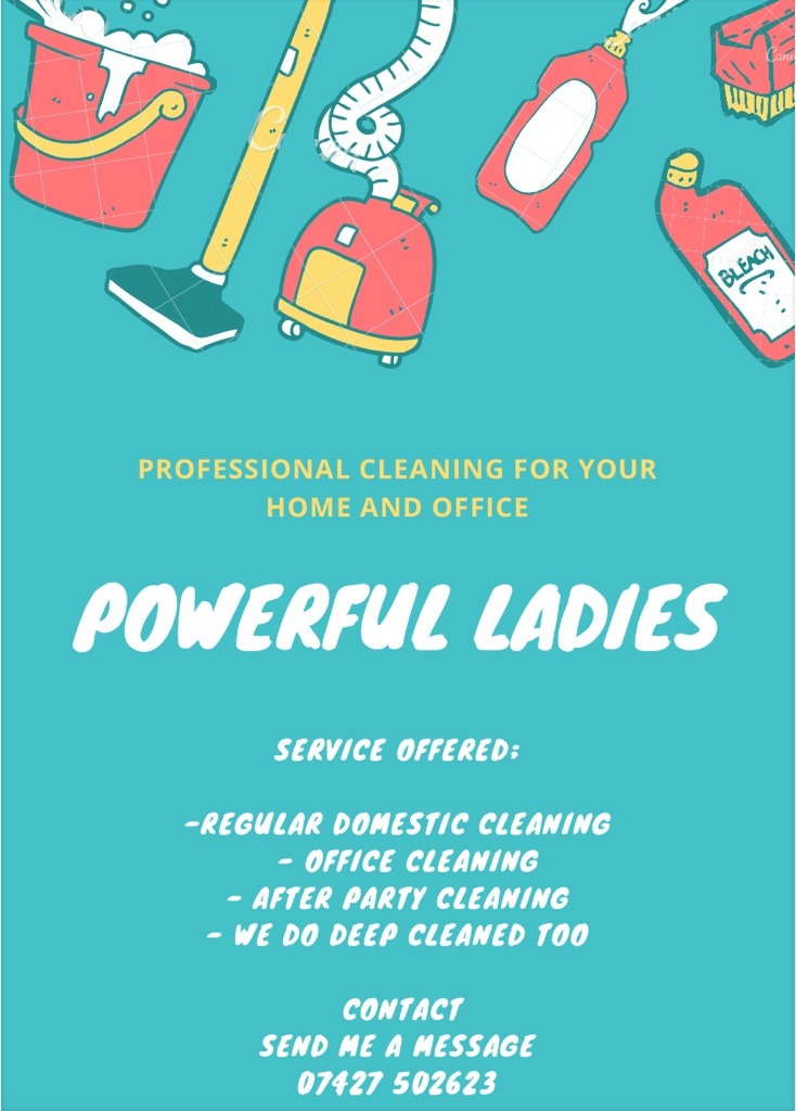 Professional cleaning e deep cleaner