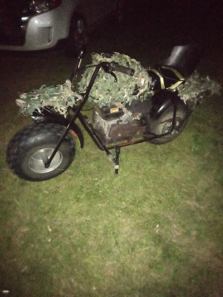 Custom 200 cc Coleman mini bike