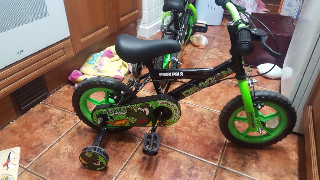 Boys 12 inch Dragon bike