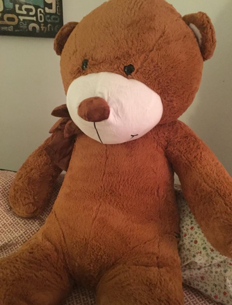 5 Foot Teddy Bear