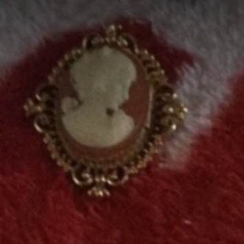 It's a broach that you put on a sweater