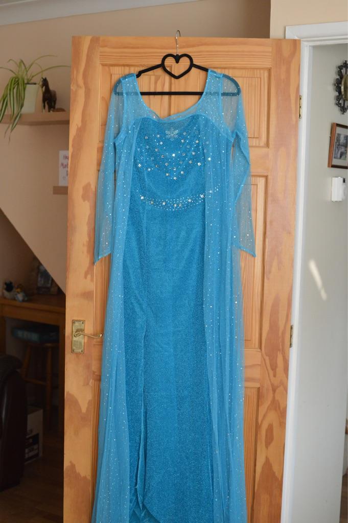 Adult Elsa Fancy Dress Costume