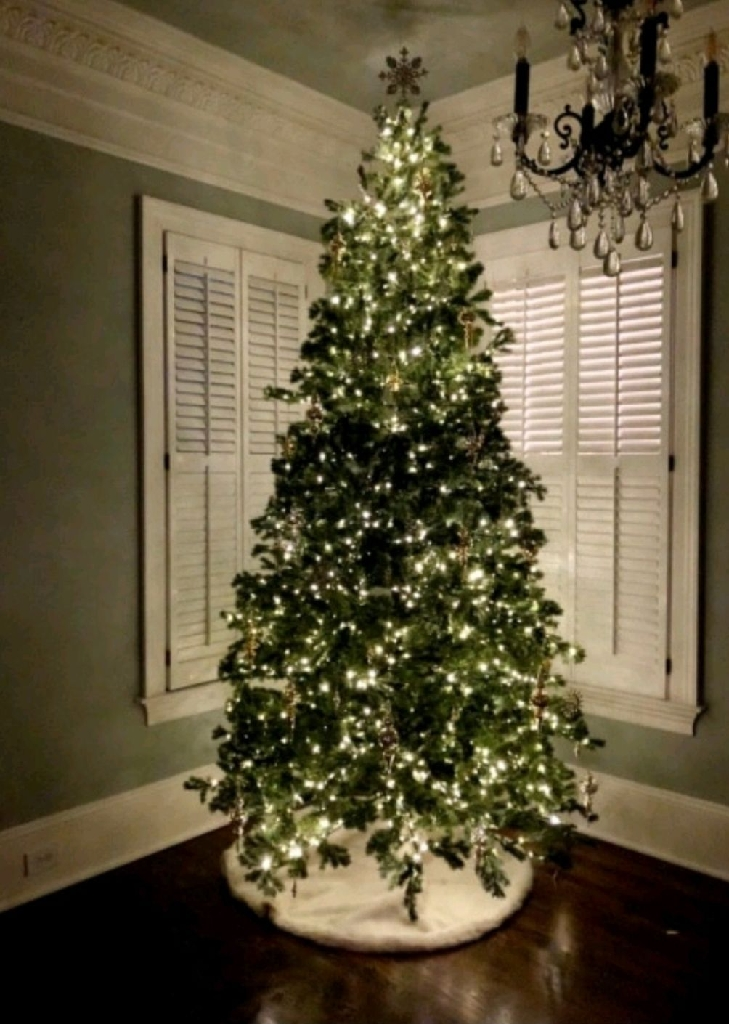 10FT Christmas Tree (Black Friday Sale)