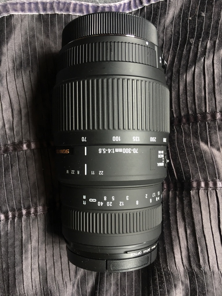 Sigma 70-300mm f4-5.6 DG Macro for Canon