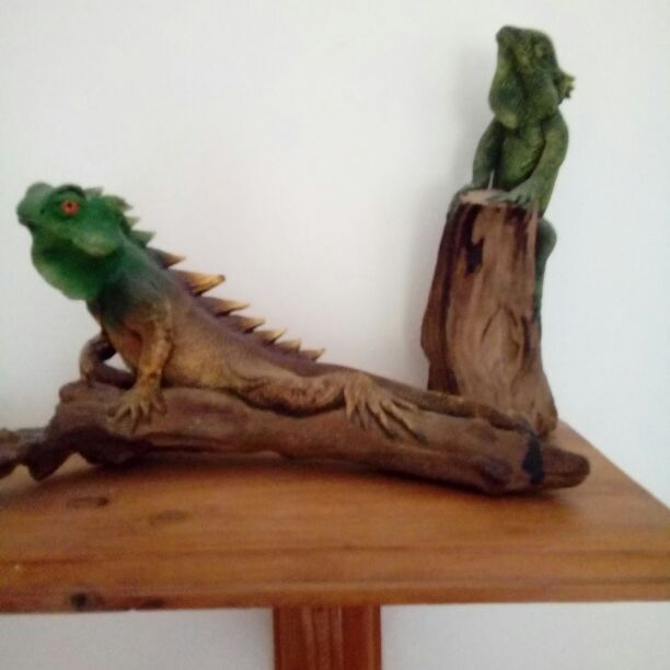 Wooden lizards