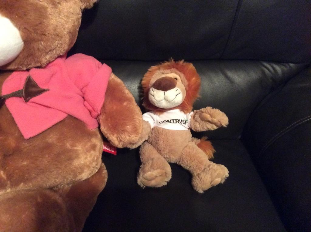 2 Teddies and 1 Lion
