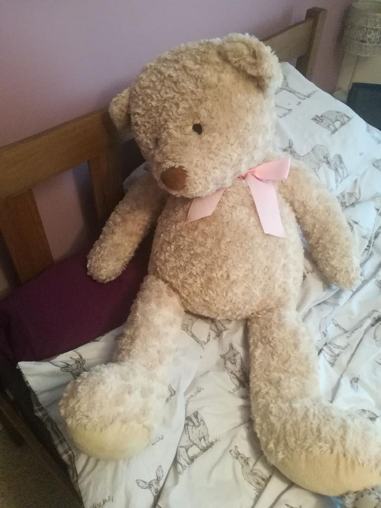 Teddy's, money bottle, cushion