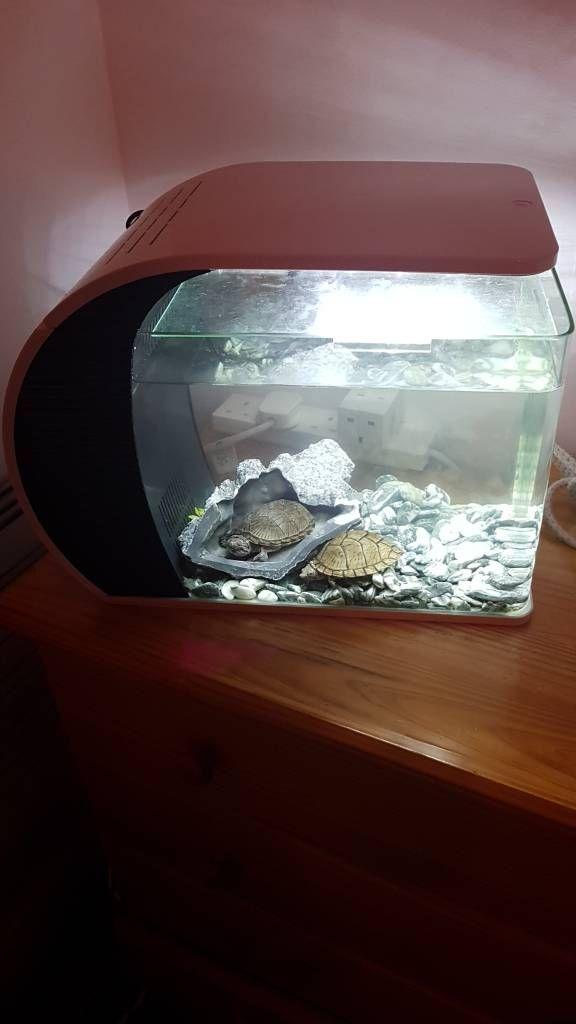 Fish tank 18L