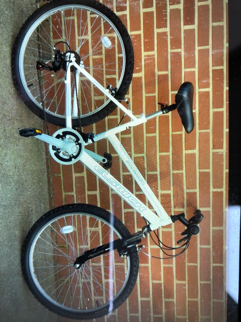 Woman's mountain bike great condition