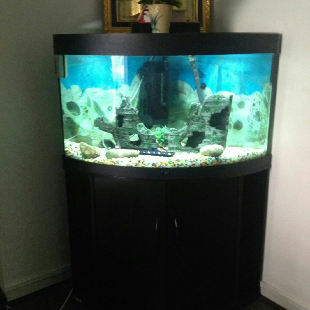 Jewel trigon 190ltrs corner fish tank with complete set up with fishes,Stoke Newington,LONDON,interested call on 07956950786