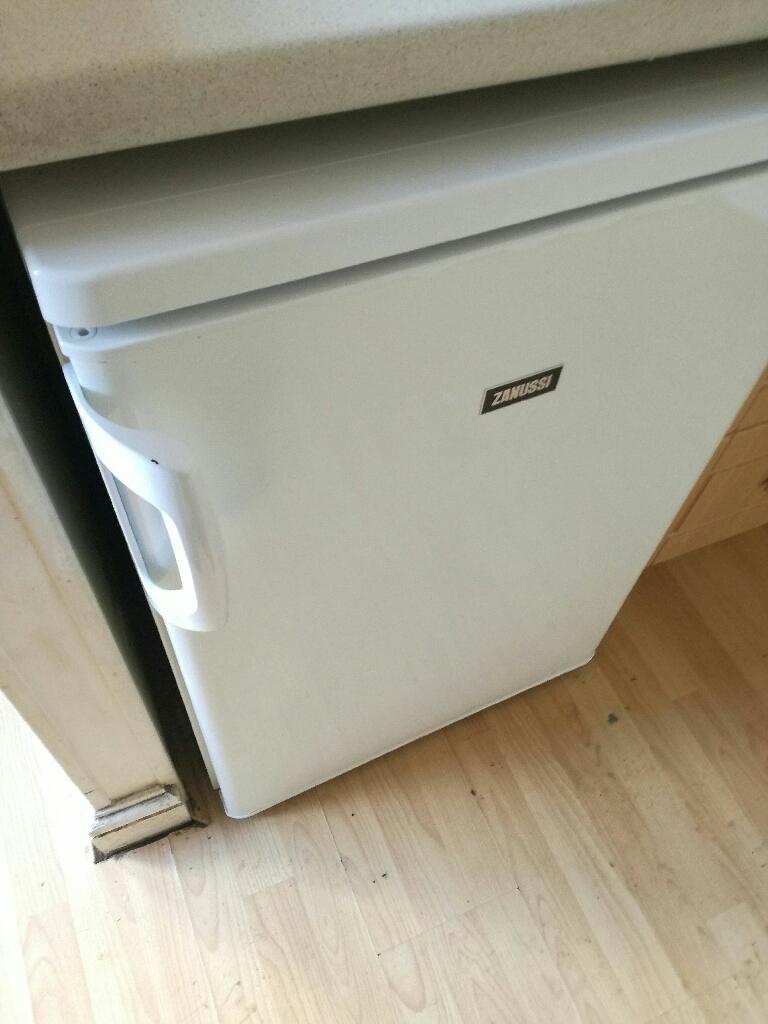 Fridge/small freezer