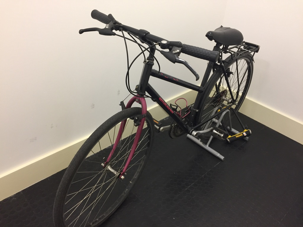 Women's bike with On Guard d-lock