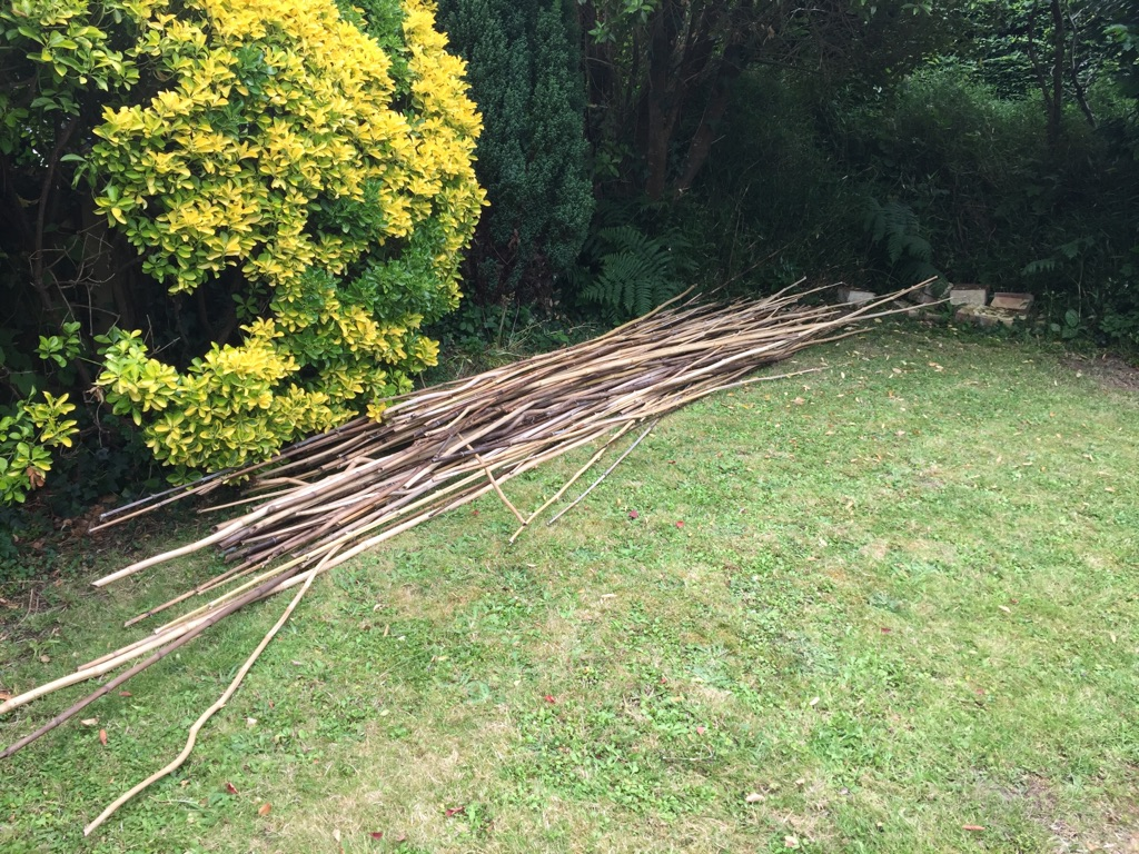 FREE 4M BAMBOO CANES