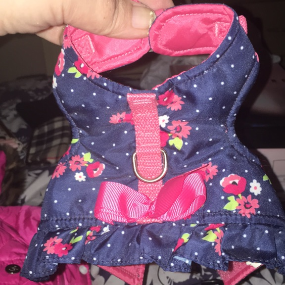 2 very small dog coats for a female
