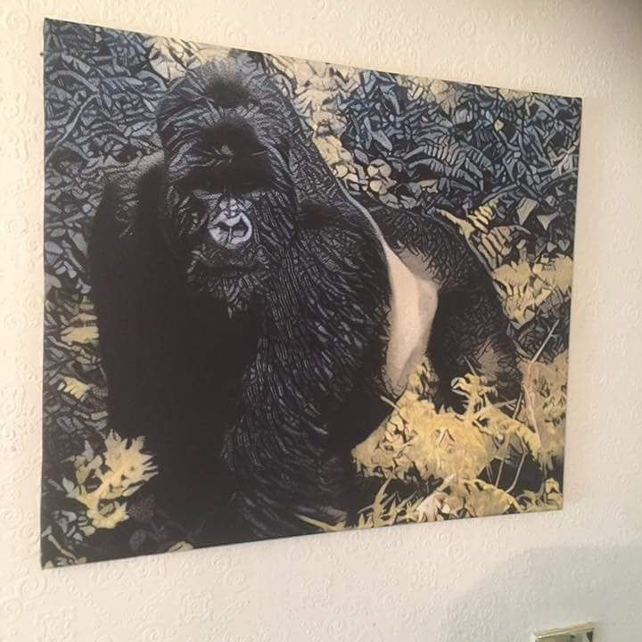 Gorilla landscape 60cm x 80cm wall art canvas ready to hang gallery wrapped