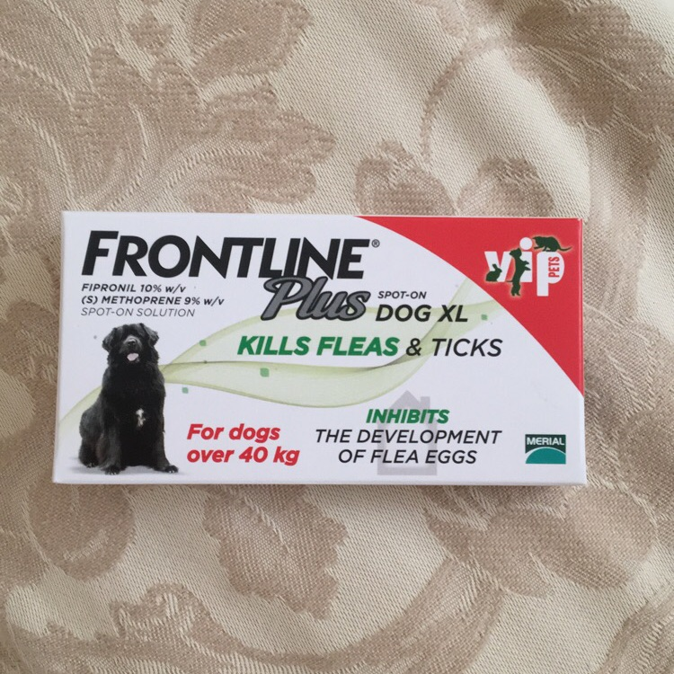 XL Frontline