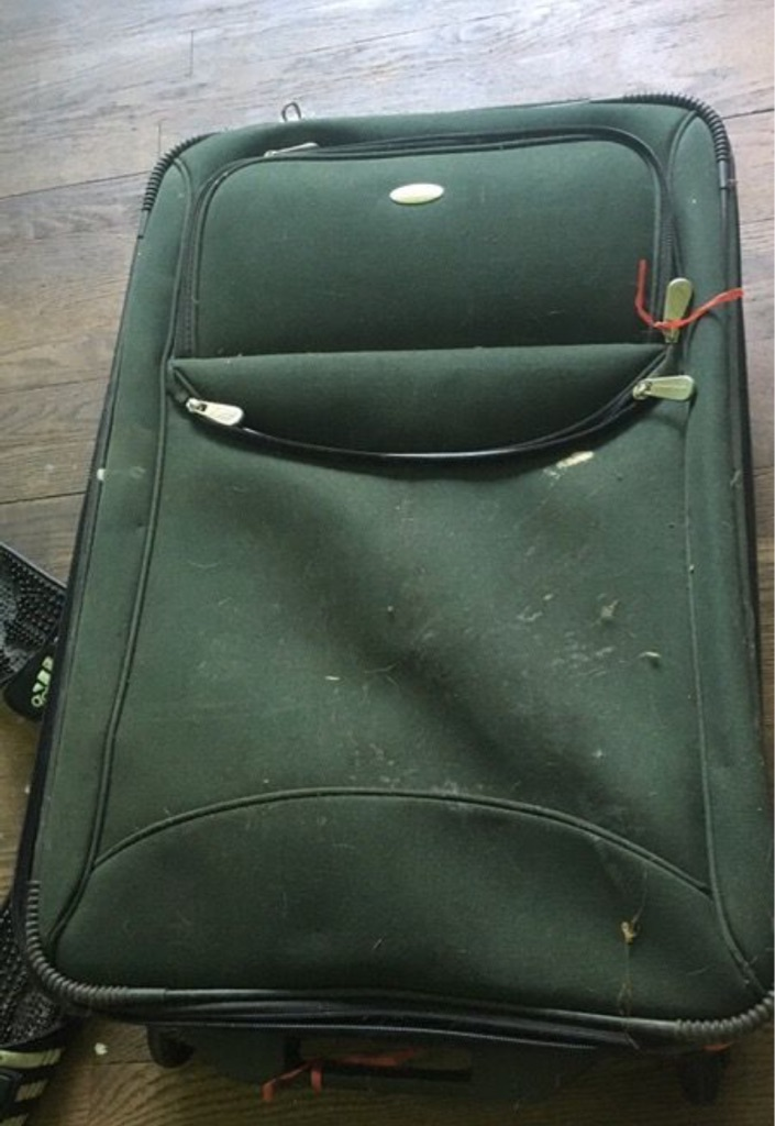 Frequent Traveler suitcase