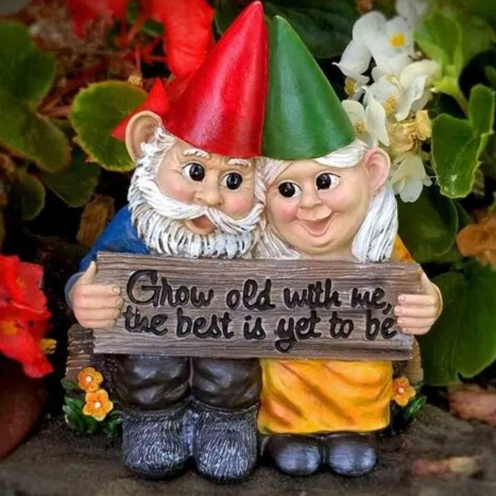 GARDEN GNOME COUPLE IN LOVE FIGURINE GROW OLD TOGETHER