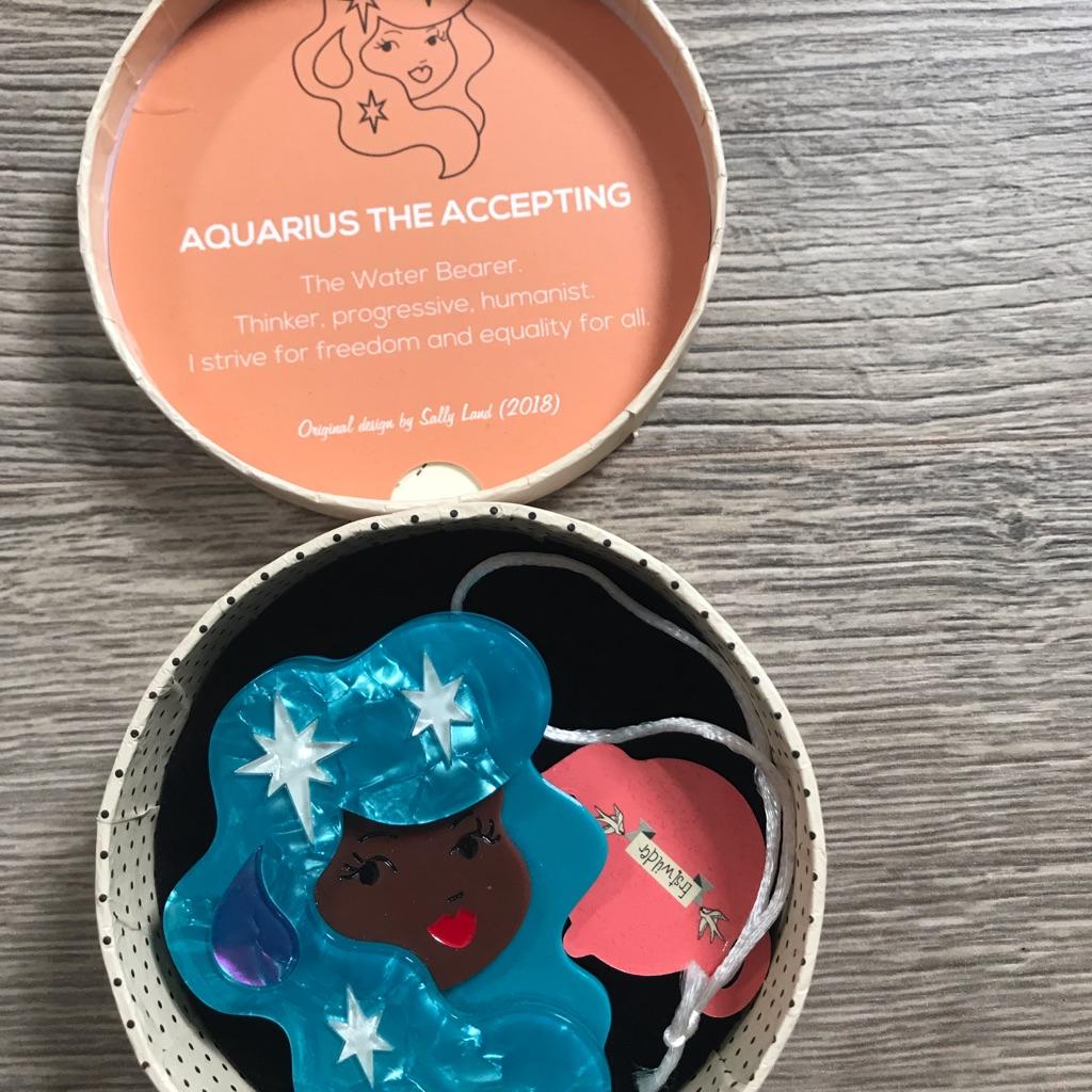 Erstwilder Aquarius brooch BNIBWT £15.00