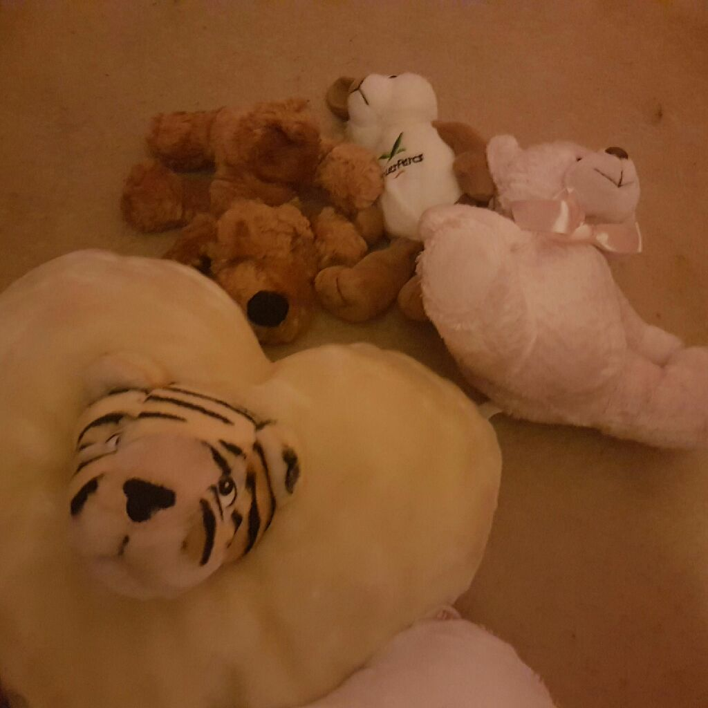 Soft toys all as new not played with