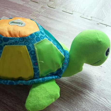 Lamaze musical turtle toy