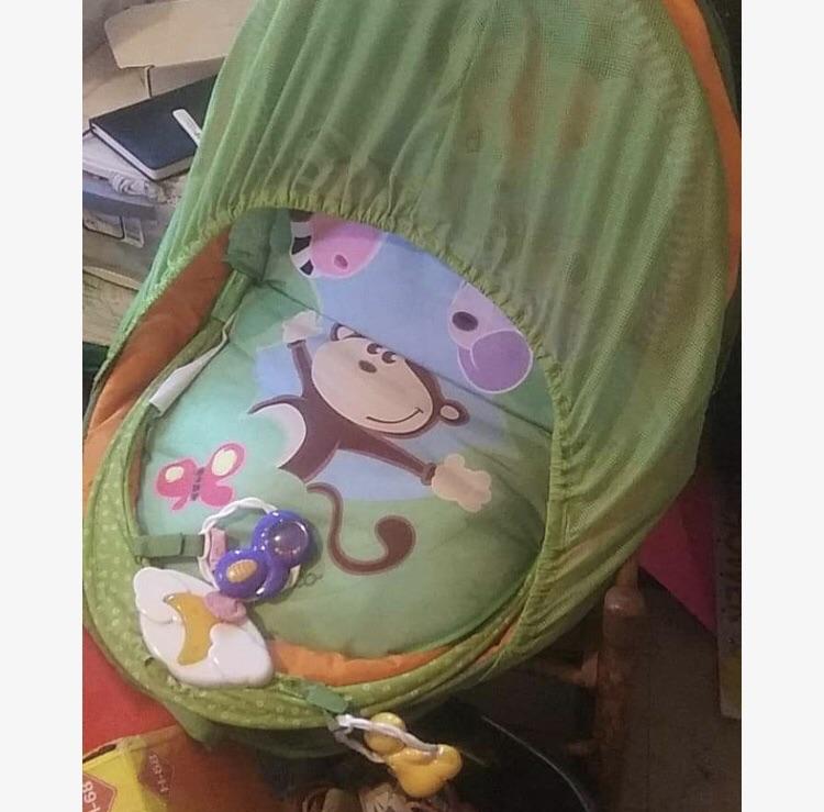 Fold N' Go Portable Monkey Travel Bassinet