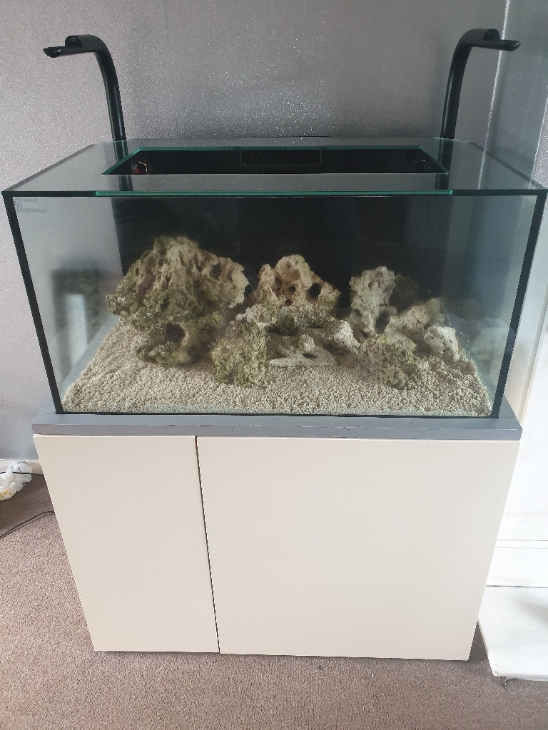 3ft ocean display marine tank