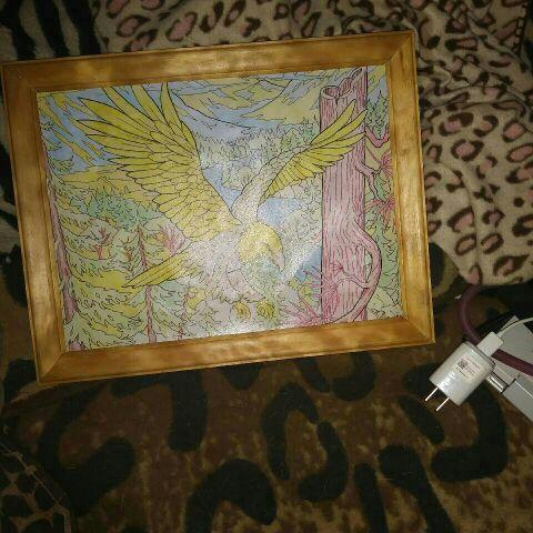 Eagle framed picture 30.00