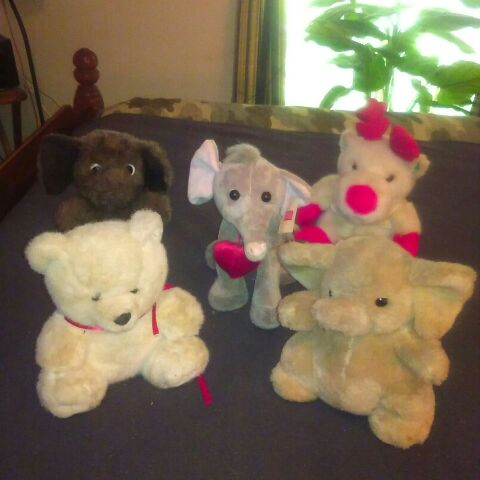 5 Stuffed Animals