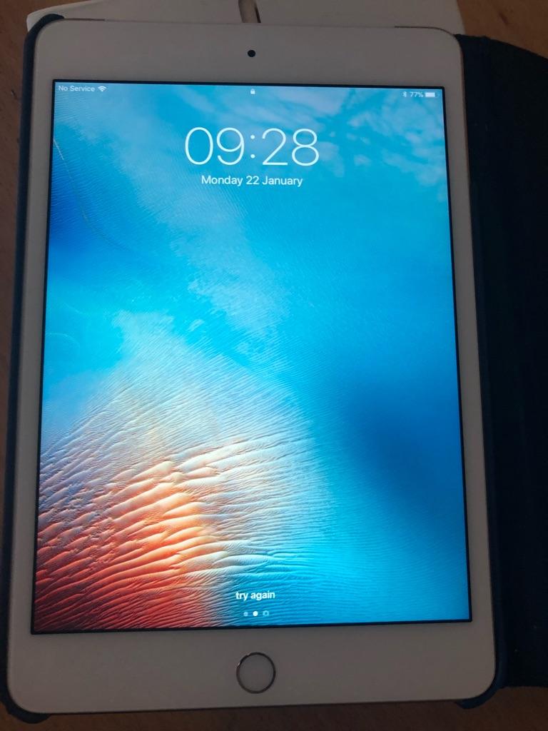 iPad mini 4 16g wifi and cellular