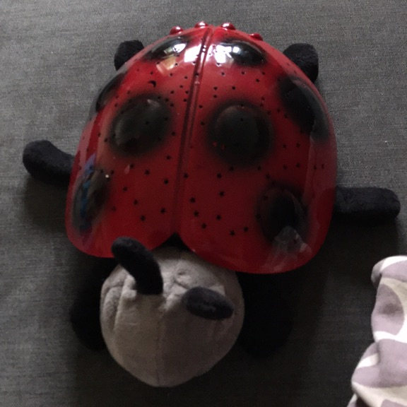 Cloud B sleeping lady bug