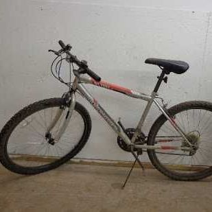 Road Master Mountain Bike