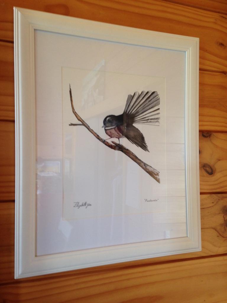 """""""Fantail"""" NZ native bird"""