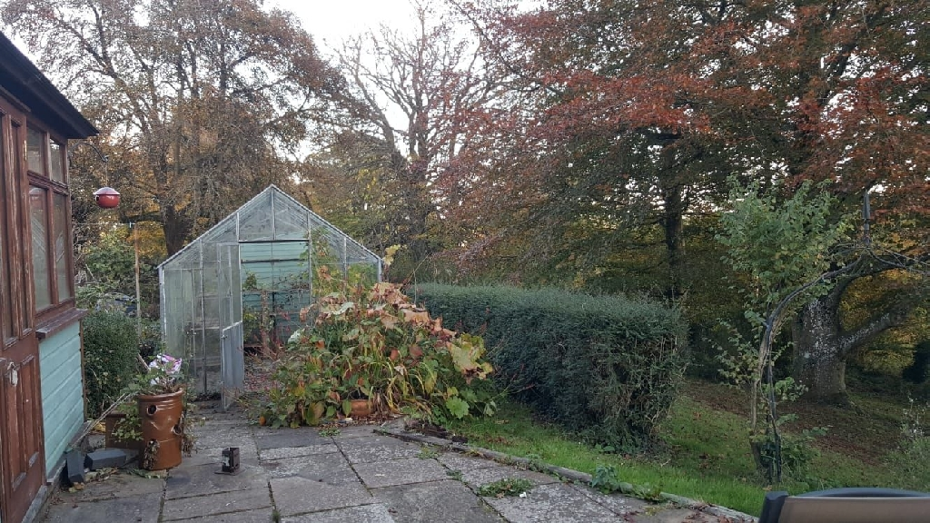 Glass Greenhouse. FREE